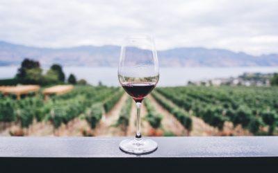 WALT Wines Opens New Tasting Room in Napa Valley