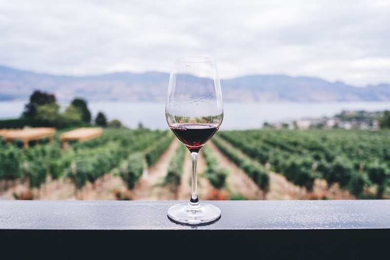 WALT Wines opens a brand new tasting room in the heart of Napa Valley for everyone to enjoy the luxurious flavors and perfect wine pairings. Walt Wines Review | Walt Wine 1000 Miles of Pinot | Walt Wines Oxbow | Walt Wines Napa Tasting Room | Walt Wines Membership
